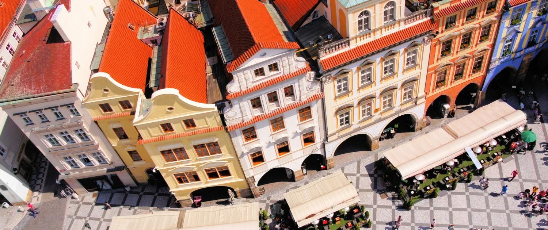 plísně Praha